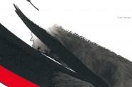 banner_1_1_img-1
